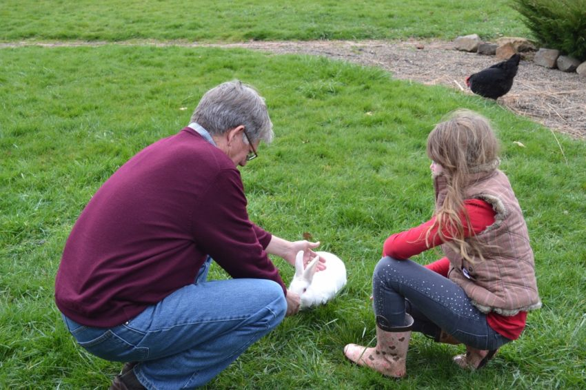 Living the American Dream: Grampa feeding bunny on Friday