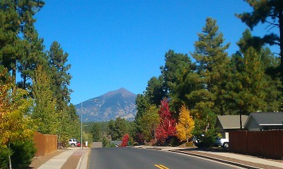 My running route. Flagstaff, Arizona