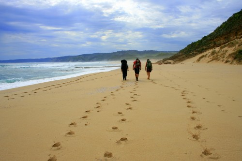 Best Hiking Destinations: The Great Ocean Walk, Australia