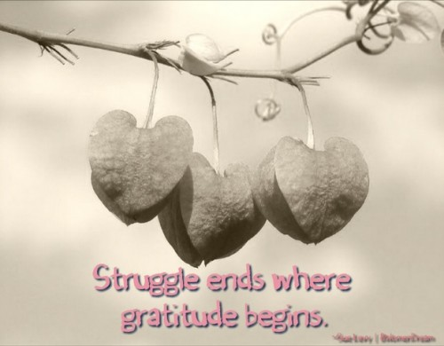 8 Ways to be Thankful on Such a Thankful Thursday: Struggle ends where gratitude begins.