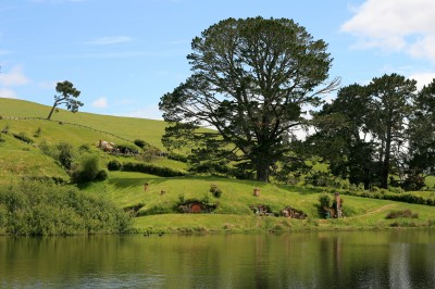 The Party Field, Hobbiton, New Zealand (pic: Natasha von Geldern)