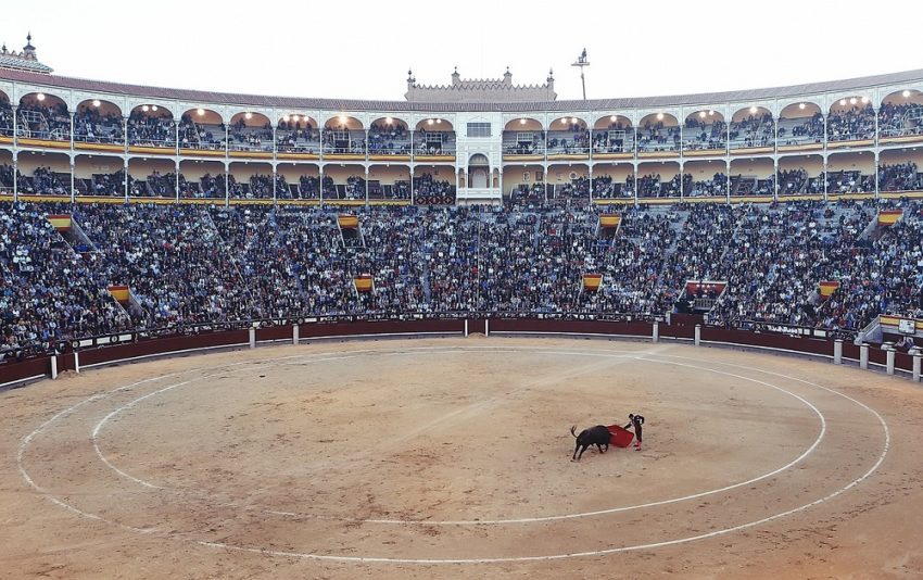 8 Must-Sees on a European Dream Vacation: Bullfight Torero Corrida Arena Fight Spain Madrid