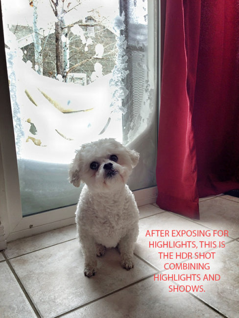 Pro iPhone Photography Tips: HDR keeps highlight and shadow detail