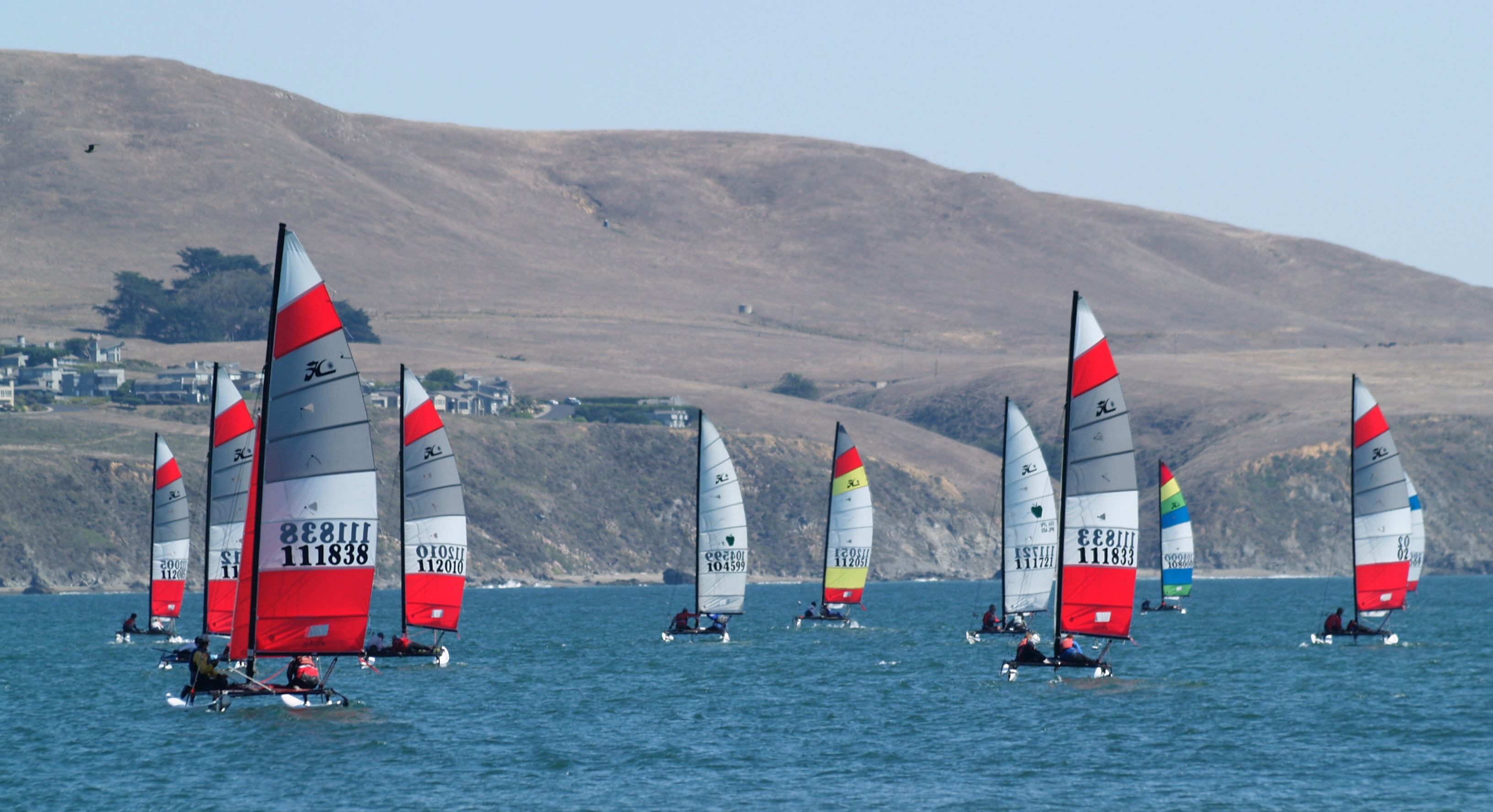 Photography Network: Bodega Bay Hobie Cat Boat Regatta