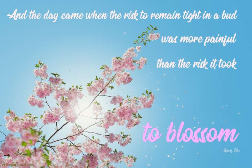 Spring in Action: 92 Days To Change Your Life - Anais Nin Quote to blossom