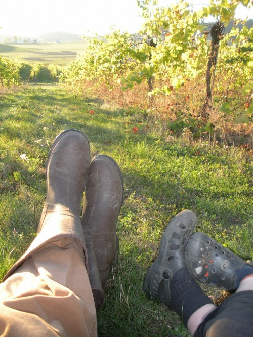 A Father's Day Love Story: Taking a break in the vineyard