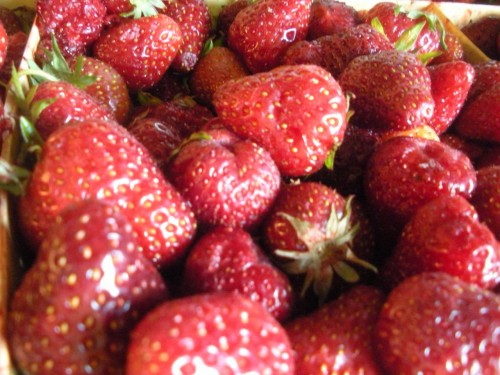 Making the Most of Seasonal Eating: Strawberries from the vineyard garden