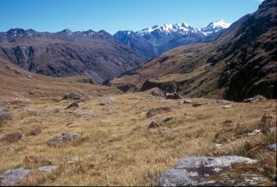 Mt Aspiring National Park, New Zealand (pic: Michael von Geldern)