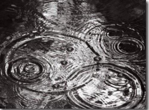 Raindrops Falling Formering Circular Shapes by Images Monsoon