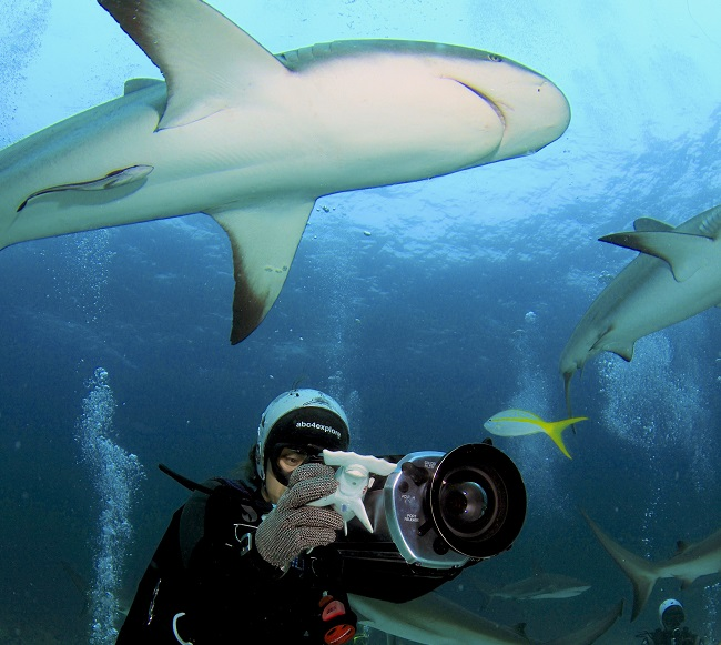 Shark Girl Madison Stewart Shows the World How Dreaming Gets Done Right: Madison Stewart filming Caribbean reef sharks