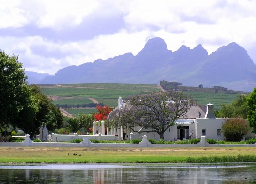 Stellenbosch wine region, South Africa dream travel