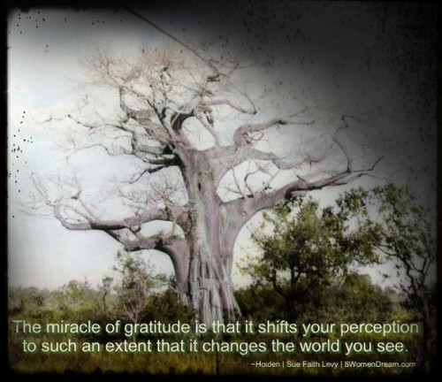 Thankful Thursday: Dream Lessons from My Grandmother - South African Baobab tree