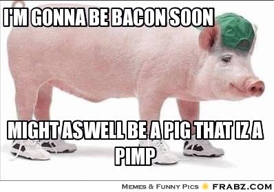 bacon pimp