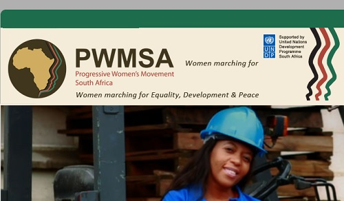 8 South African Organizations Empowering Women: PWMSA