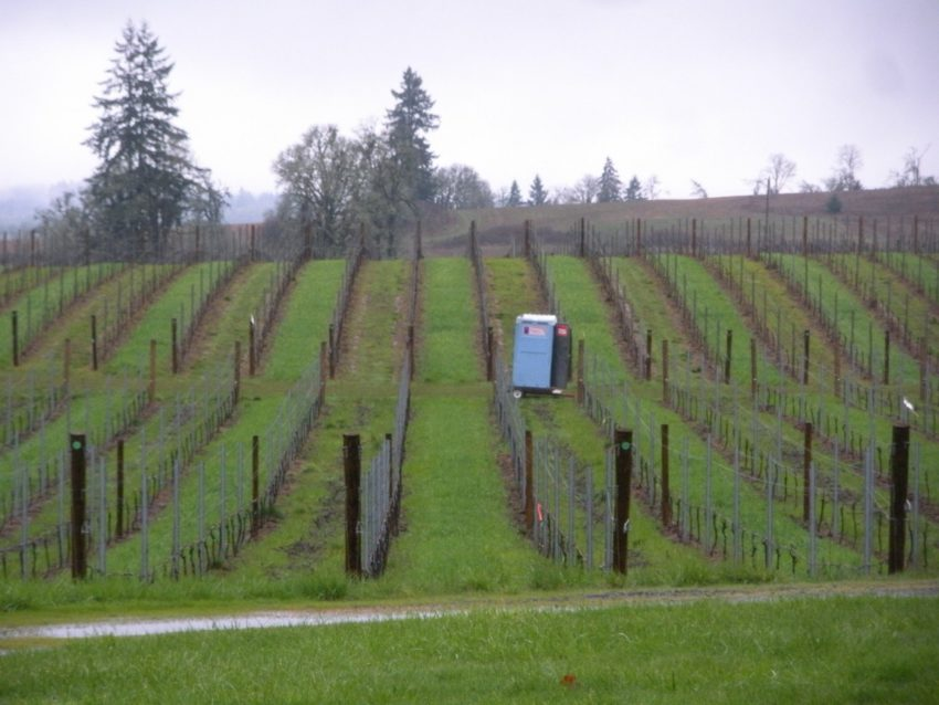 Living at a Vineyard in Willamette Valley: Moving the honey bucket