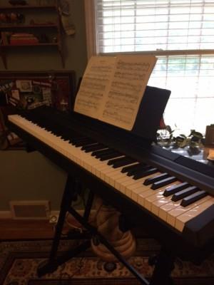 pianomotivationalspeaker