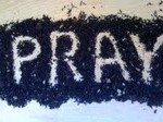 Eat, Pray, Cope: Pray