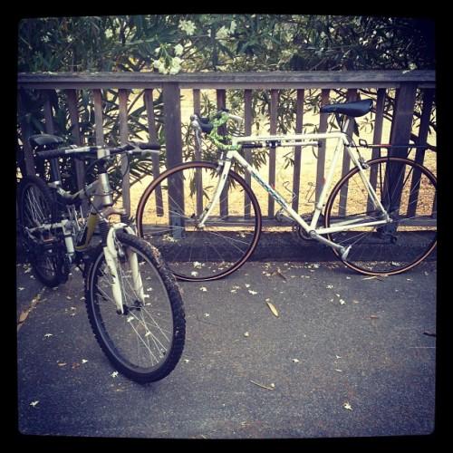triathlon training saved by rusty bikes