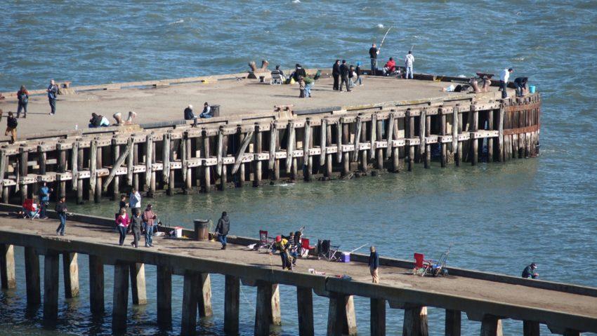 Wordless Wednesday: SF Bay Pier San Francisco Adventures