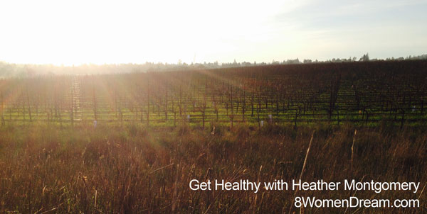 Sun over the vineyard in Laguna da Santa Rosa - Get healthy with Heather Montgomery